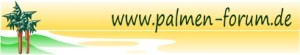 Banner_Palmenforum